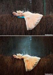 Художественная обработка фотографии. Лесная сказка.