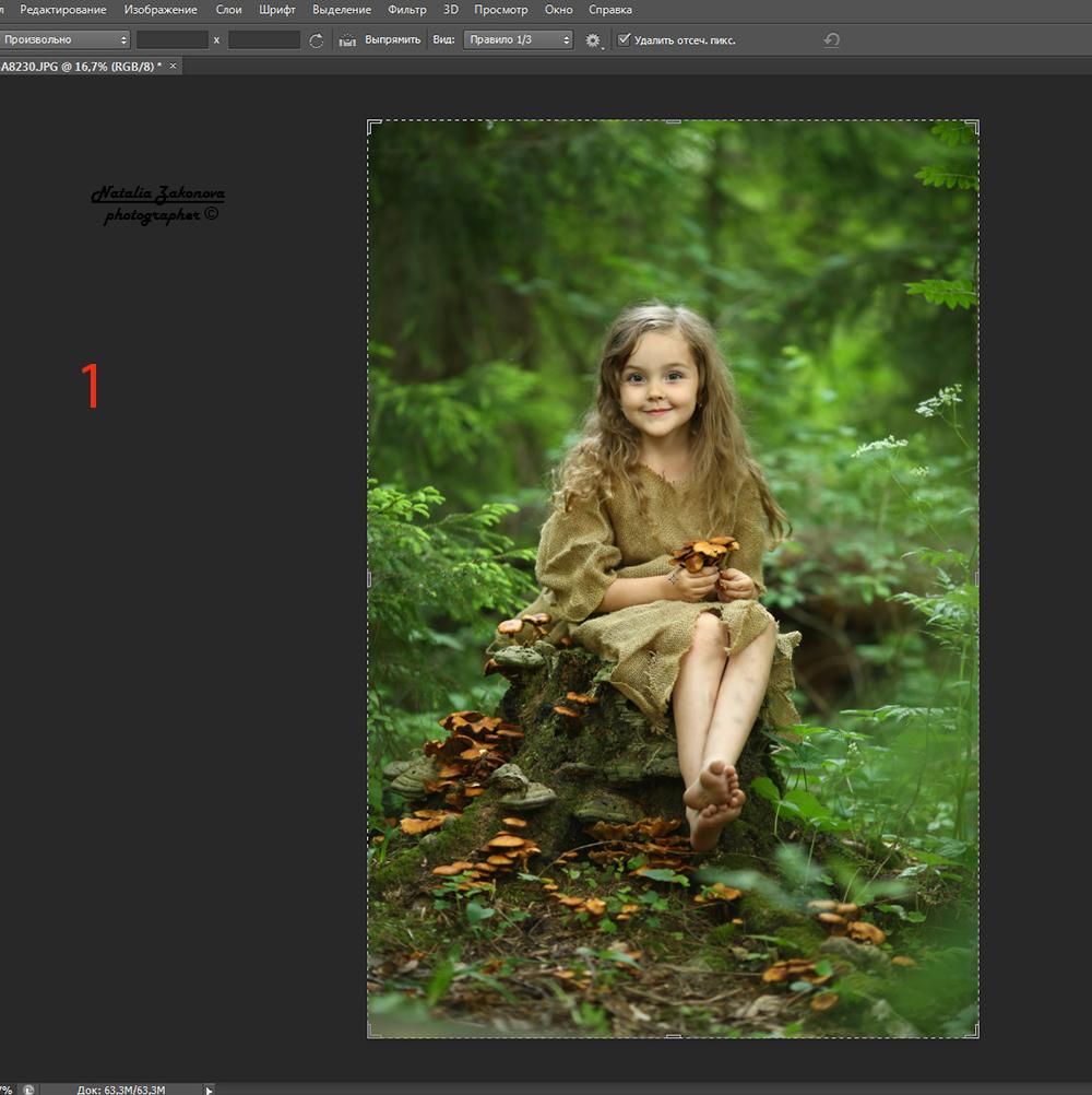 обработка фотографии как картинка