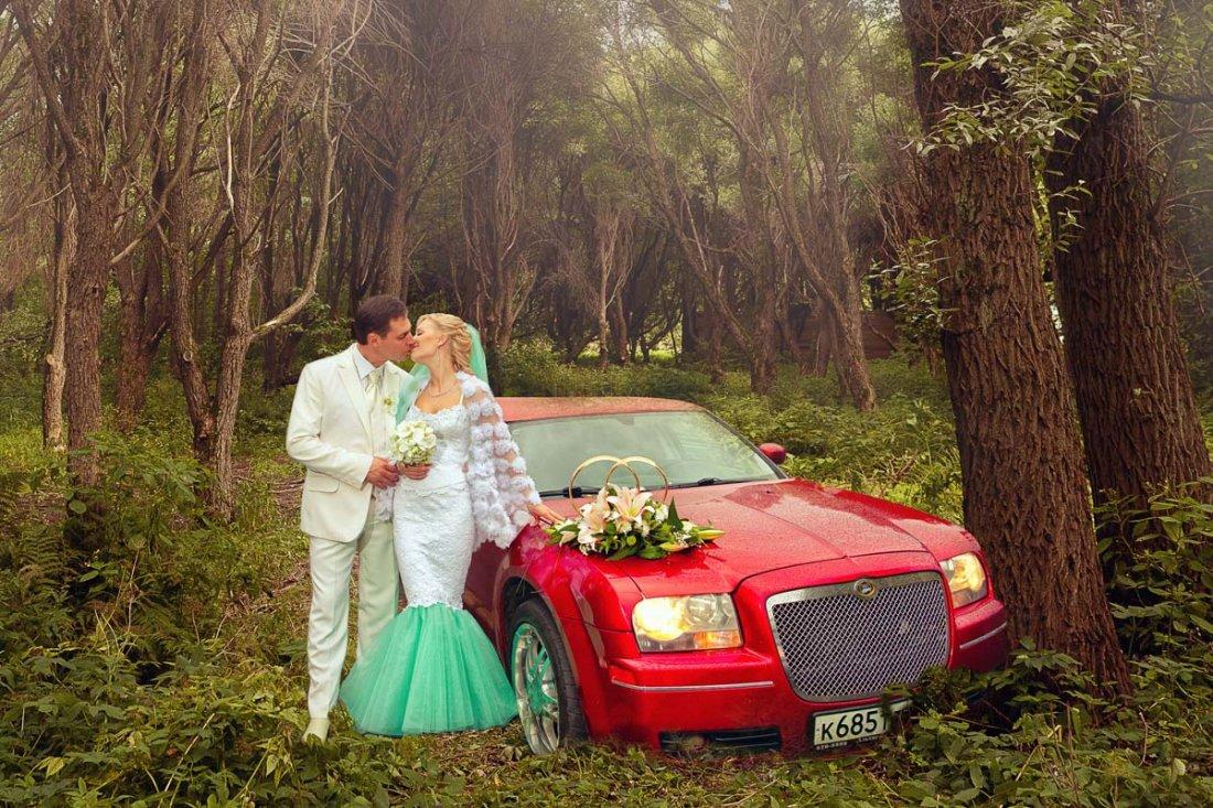 порода места в москве для фотосессии автомобиля том